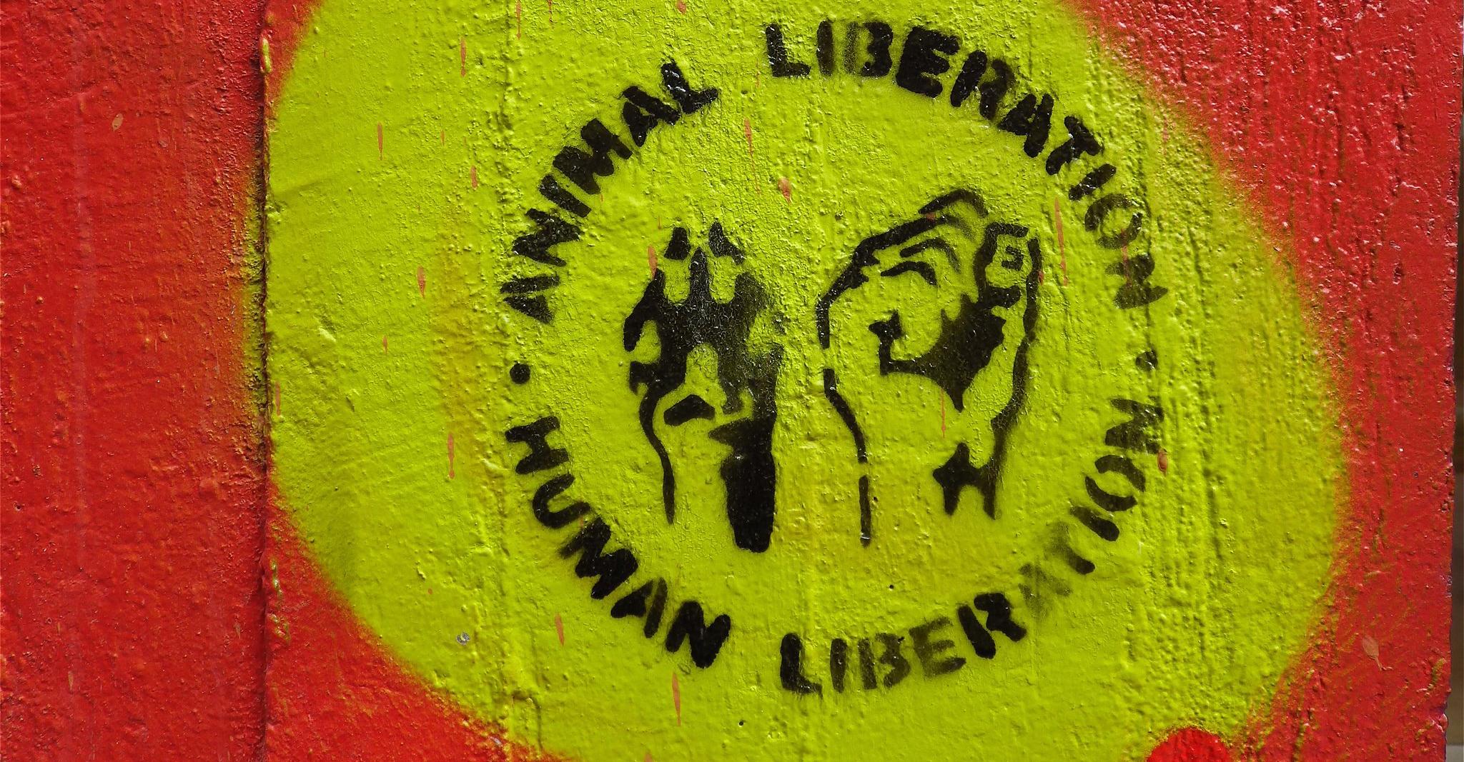 Animal Liberation By Peter Singer Pdf